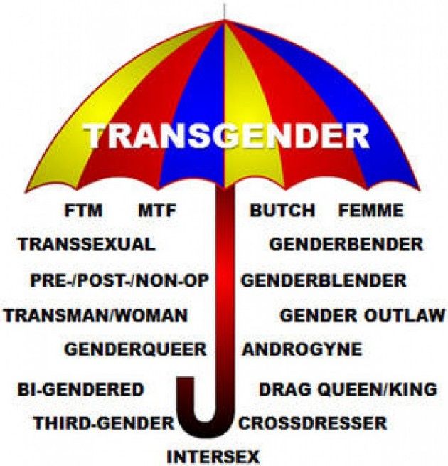 Kjønnsidentiteter på tvers