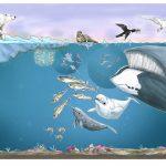 Økosystemet