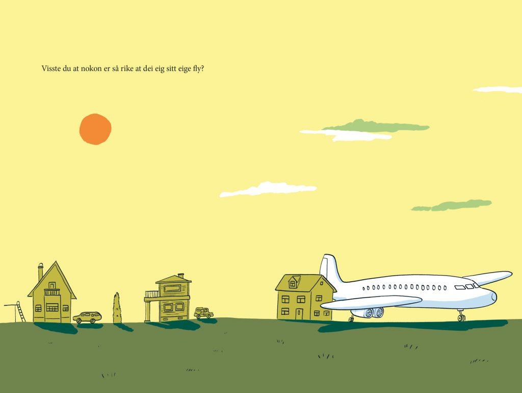 Visste du at … Fly, Samlaget 2020